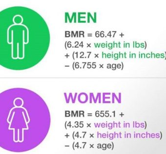 What is BMR   How to check your BMR